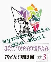 http://tricksartist.blogspot.com/2013/11/wyniki-sztukaterii-3.html