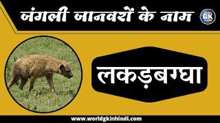 Hyena Animal Name In Hindi