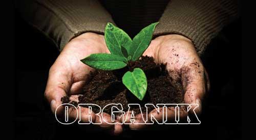 Pengertian Organik dan Anorganik