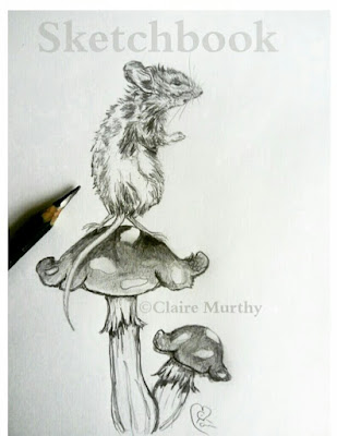 wildlife art mouse in pencil