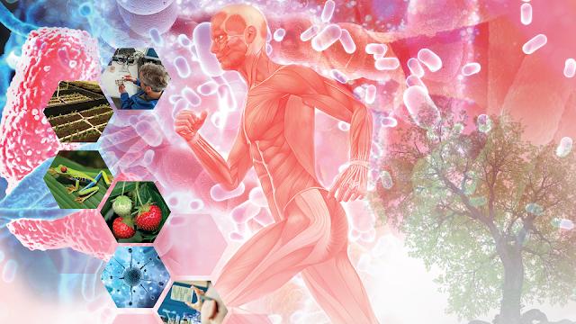 Los microbios: un elemento clave para la regeneración de la naturaleza
