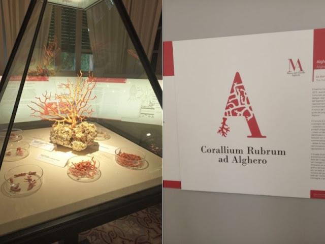 museo Corallo Alghero