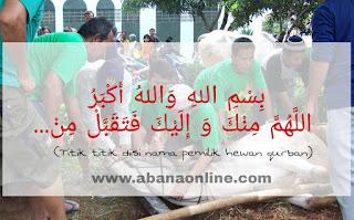 Doa Menyembelih Hewan Qurban dan Aqiqah Sesuai Sunnah