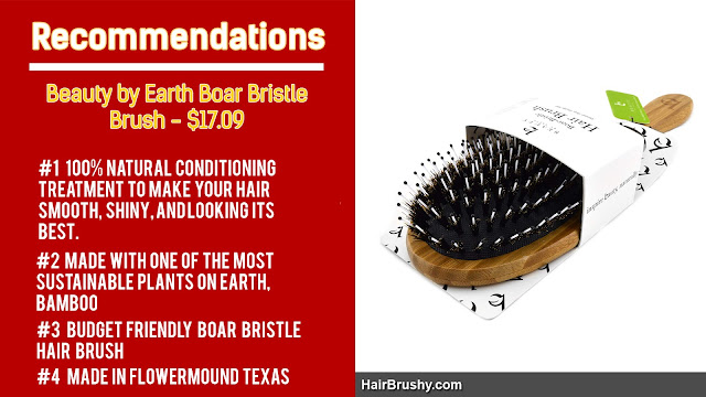 Beauty by Earth Boar Bristle Brush