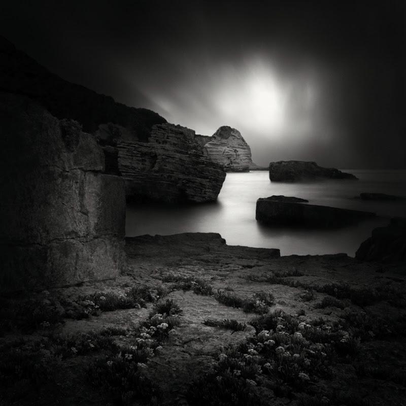 'Dark Beauty' a series of Beautiful Nature Photography by Yucel Basoglu.
