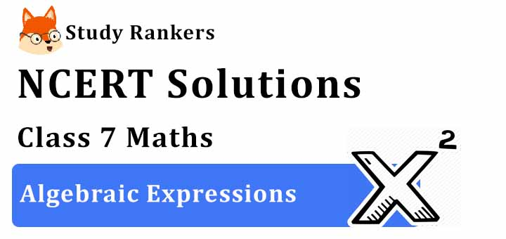 NCERT Solutions for Class 7 Maths Chapter 12 Algebraic Expressions