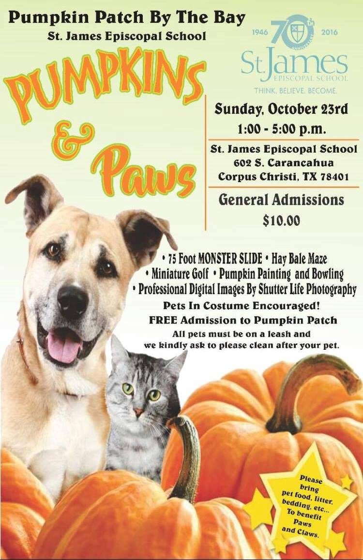st james episcopal school of corpus christi pumpkins and paws from 1 to 5 pm hay bale maze pets in costumes monster slide pumpkin painting and bowling - Halloween Stores In Corpus Christi