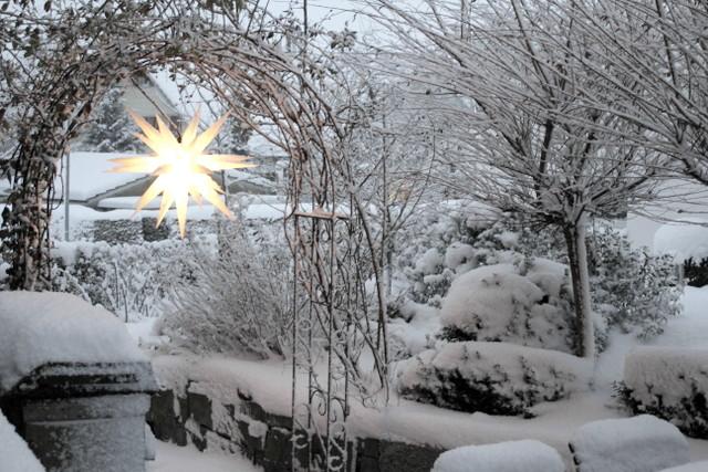 Ein Schweizer Garten: Sternstunden