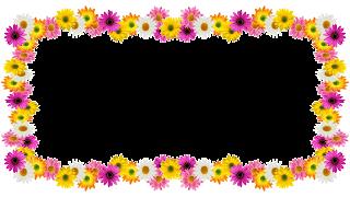 Spring flores frame - 1 photos png