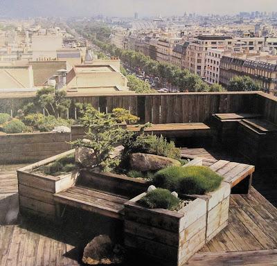 Tout petits jardins - Jill Billington