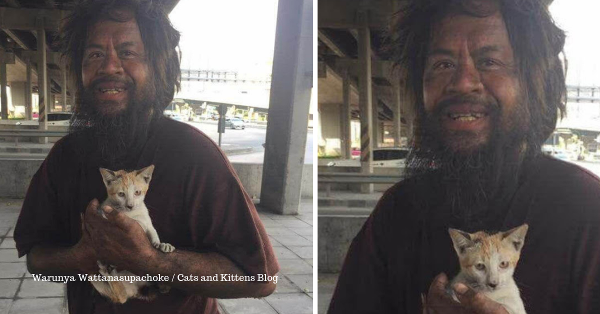 Homeless Man Goes Viral for Selling Lime to Feed Stray Cats First