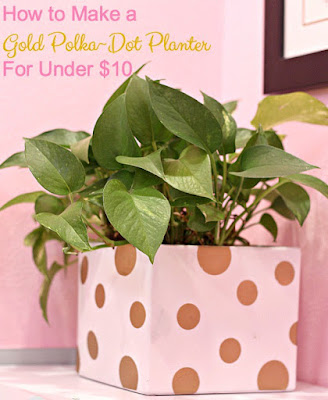 http://blueskykitchen.net/2017/01/10/how-to-make-a-gold-polka-dot-planter-for-under-10/