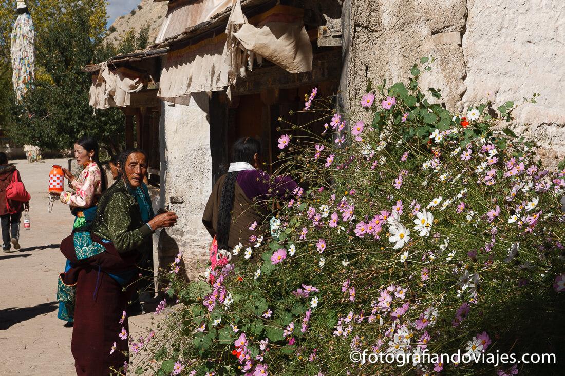 perigrinos en Gyantse