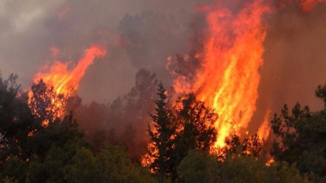 Σε υψηλό κίνδυνο πυρκαγιάς η Αργολίδα το Σάββατο 17 Ιουλίου