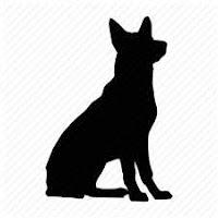 perro-compressed.jpg