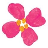 Fingerprint Fruits and Flowers - Step 1