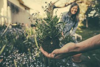 Manfaat Berkebun