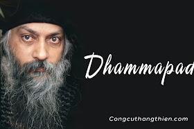 Dhammapada - Con đường của Phật - Tập 07 - Osho