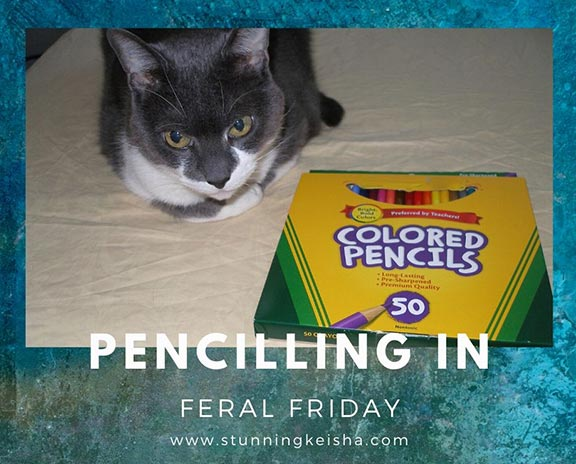 Pencilling in Feral Friday
