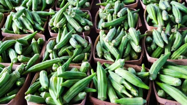 Sayur Okra, Ini Manfaat dan Cara Hilangkan Lendirnya