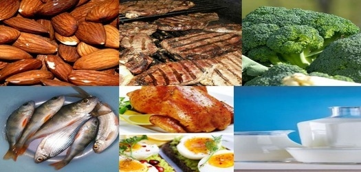 Proteins Rich Foods