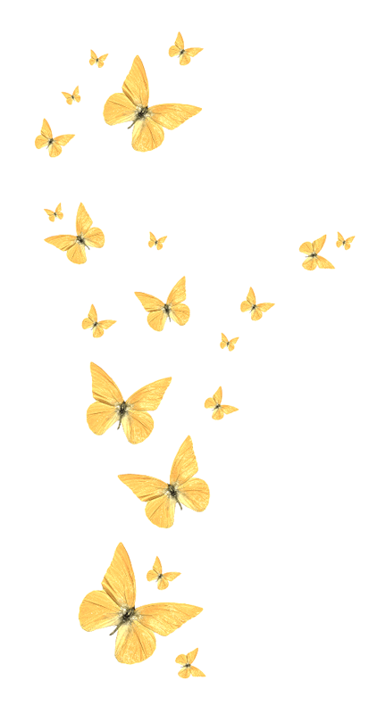 Butterfly, Golden butterfly, yellow butterfly, png Material, angle, golden Frame png free png file