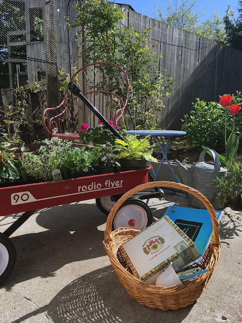 gardening, spring, traveling studio, sketchbook, wagon, radio flyer, plants, flowers, Anne Butera, My Giant Strawberry