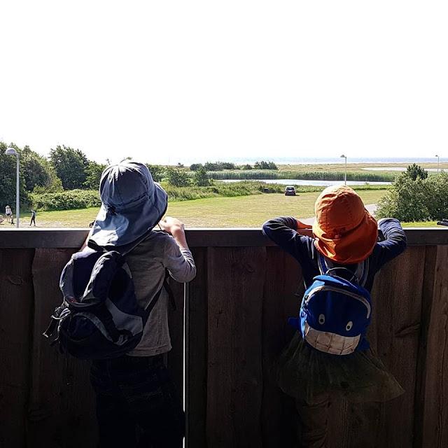 Unsere 11 besten Ausflugstipps für die Ostseeküste Nordjütlands. Eine echte Attraktion, nicht nur für Kinder: Der Aussichtsturm neben dem Hafen von Hou in Norddänemark.