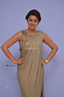 Nikki Galrani in Saree 121.JPG