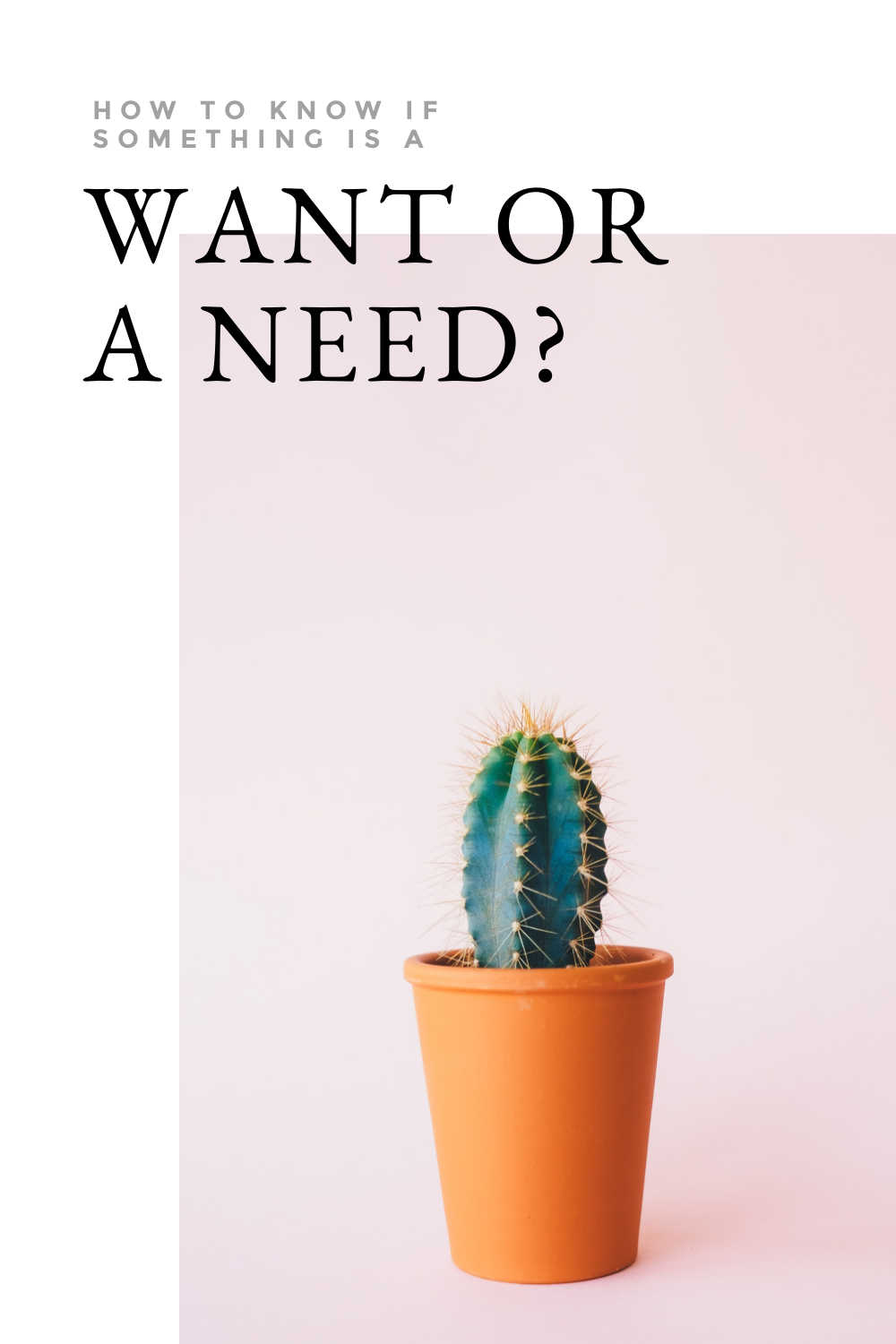 HOW TO KNOW IF SOMETHING IS A WANT OR A NEED