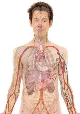Immunity And its Remedies