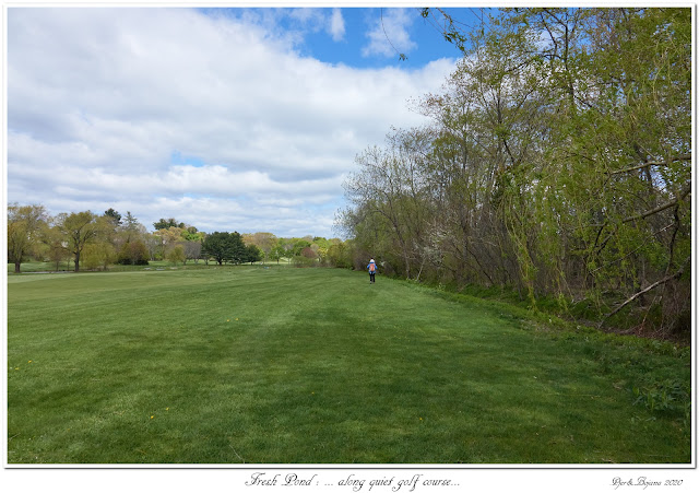 Fresh Pond: ... along quiet golf course...