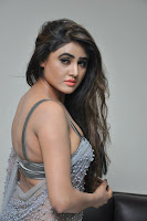 Actress Sony Charistha Latest Pos in Silver Saree at Black Money Movie Audio Launch  0036.jpg