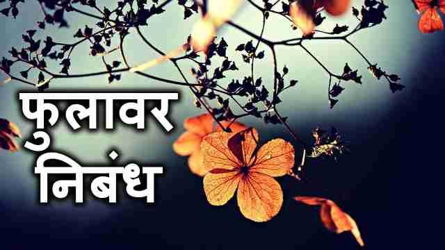 फुलावर मराठी निबंध | [Essay on Flower in Marathi]