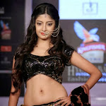 Poonam Kaur hot pictures hyderabad international fashion week