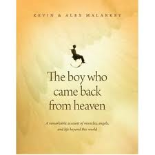 the boy who came back from heaven pdf