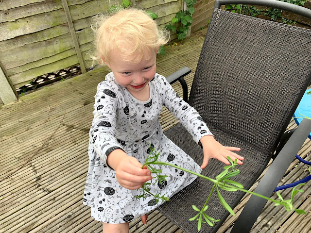 Toddler with a weed in the garden