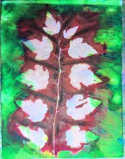 Solarfast prints_Sue Reno_Image 64