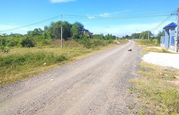 bán đất mặt tiền đường ODA cách trường tiểu học Hồ Tràm vài bước chân