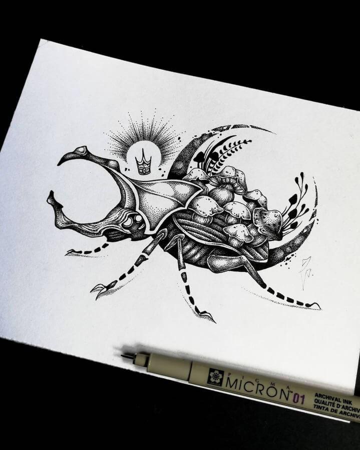 04-Rhinoceros-beetl-Zakrii-www-designstack-co