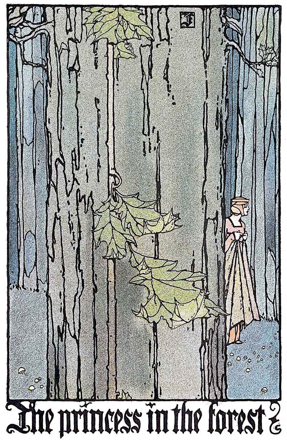 The princess in the forest,  a C.B. Falls 1930 illustration