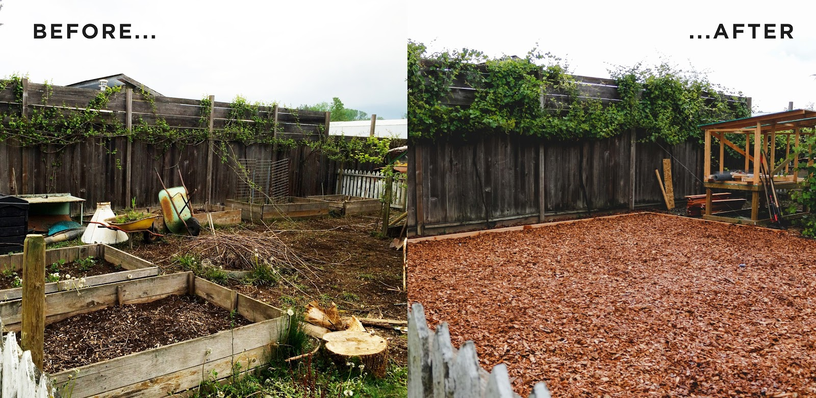 Organic Garden Transformation Victoria Rose Park