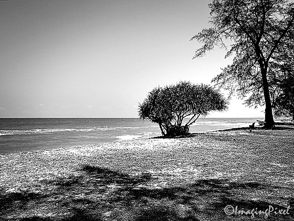 Digital Moments: Quiet On The Beach 01