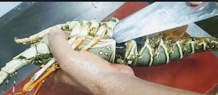 Peeling lobster for lobster hot garlic recipe