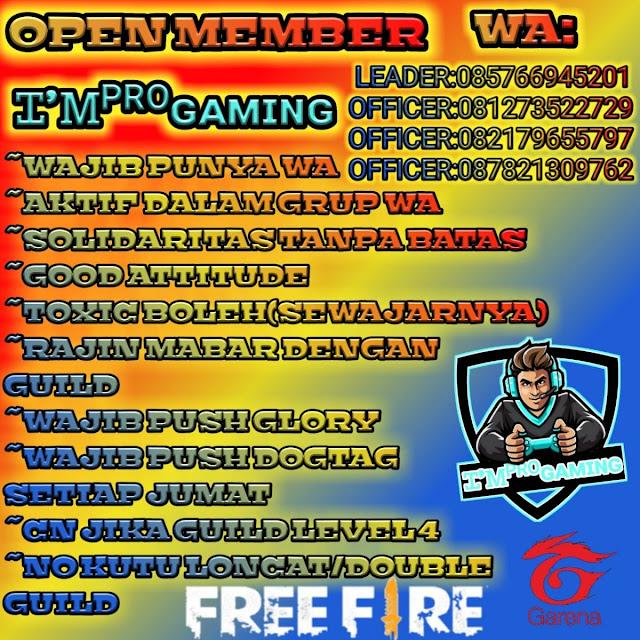 Pro Gaming FF