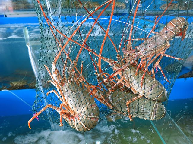 Lobsters Johor