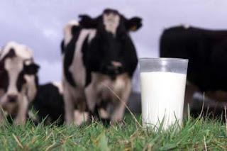 Instalan en Chihuahua dispensador ecológico de leche