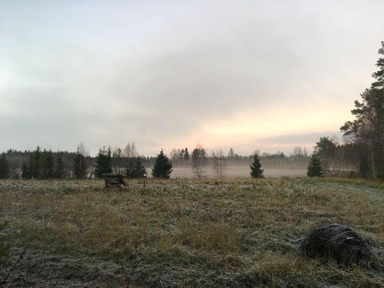 Metsästysseuran Jäsenyys
