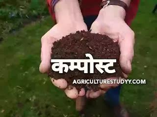 कम्पोस्ट खाद (compost meaning in hindi) क्या होती है एवं कम्पोस्ट खाद कैसे बनाई जाती है विधियां लिखिए, कम्पोस्ट खाद कैसे बनाई जाती है विधियां, Compost
