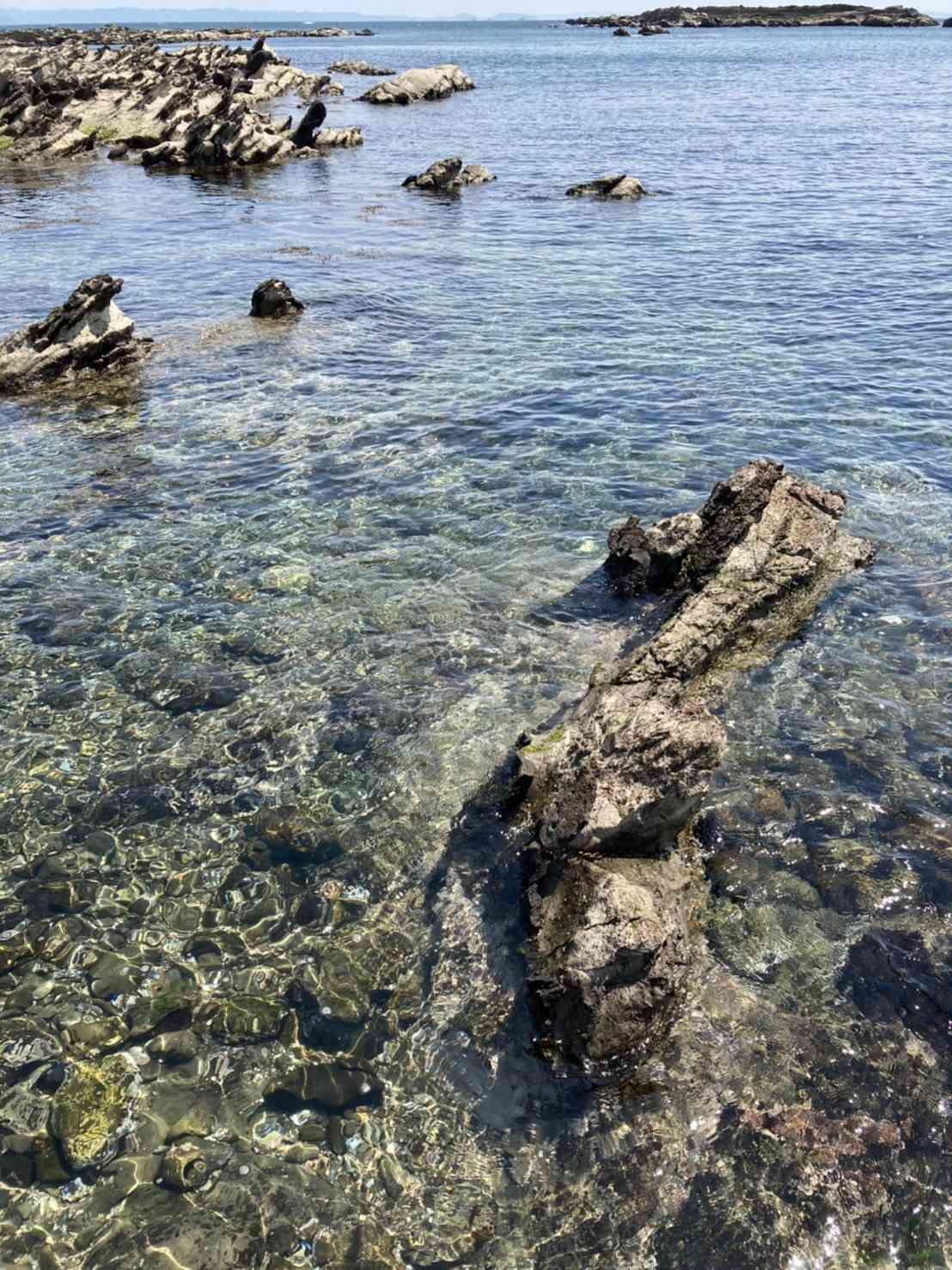 透き通った海 自然との触れ合い